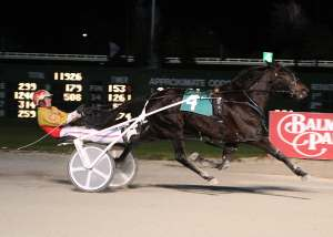 Eric Carlson and Rev Me Up had no trouble disposing of nine other filly and mare pacers in Sunday's $14,500 Fox Valley Memory Stake at Balmoral Park