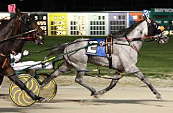 John De Long guided the good looking Silver Devil to an upset score in Friday's $34,380 Cardinal Stake at Maywood Park. (Maywood Park Photo)