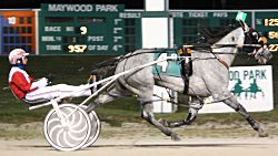 Silver Devil and Casey Leonard were all alone at the finish of Friday's $15,000 Cole Muffler stake at Maywood Park (Maywood Park photo)